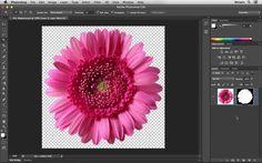 Como remover o fundo de uma imagem