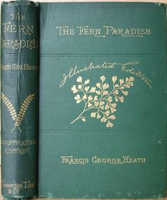 The Fern Paradise...F.G.Heath   1880