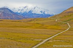 Denali National Park - Alaska - USA