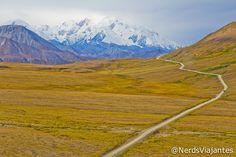 Denali National Park - Alaska - USA