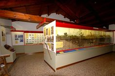 La mostra si può visitare presso il Museo della Terra di Venzone (provincia di Udine), Palazzo Orgnana-Martina, in Via Mistruzzi 4. Dalla brochure dedicata: La storia delle Foreste è il tema inizia...