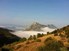 Les Pyrénées vues du château de Queribus en Pays Cathare