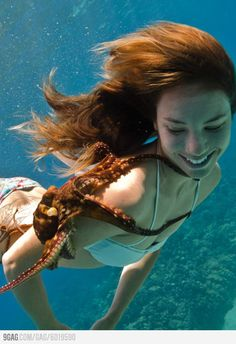 Underwater pic of girl and octopus. Underwater Photos, Underwater Photography, Octopus Photography, Foto One, Marine Biology, Ocean Life, Marine Life, Sea Creatures, Under The Sea