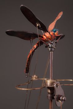 Red Dragonfly — David Beck Art Works