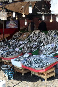 Bosphorus Fish Market, Istanbul, Turkey. With its shores on Marmara, Aegean and Mediterranian Seas, Turkey is geographicly a very fortunate country. The characteristics of these seas vary, which provides a nice diversity. Istanbul adds a plus to this variety with plenty of excellent fish restaurants located by the Bosphorus, offering a splendid view.