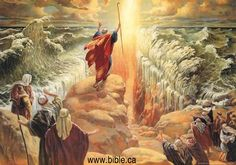Livro de Numeros capitulo 16:5 - Bing Imagens