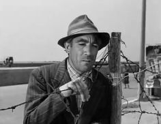 Anthony Quinn Lion Of The Desert, Zorba The Greek, Lawrence Of Arabia, Anthony Quinn, Lust For Life, Best Supporting Actor, Mexican American, American Actors, Chihuahua