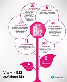 Vitamin B12 Infografik