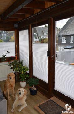 Wärmeschutz + Sonnenschutz + Sichtschutz = Wohlfühlatmosphäre im Wintergarten dank Plissees | pleated blinds in an winter garden