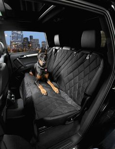 - Is your dog destroying your back seat? This cover protects your back seats from fur, dirt and claws. Heavy duty, easy to clean, weatherproof material prevents seat tears and scrapes. - This luxuriou