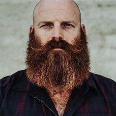 The Envious Beard Red Beard, Beard Look, Moustache, Beard No Mustache, Great Beards, Awesome Beards, Hairy Men, Bearded Men, Badass Beard