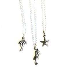 http://www.bellabeachjewels.com/collections/necklaces/products/tiny-tropical-charm-necklace