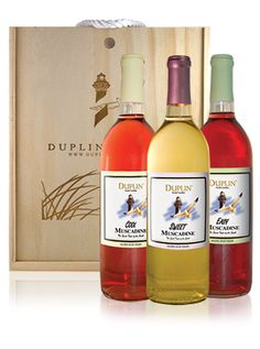 Fresh & Lively Collectible Box | Duplin Winery
