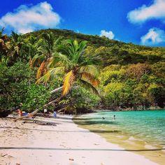 Maho Bay Beach (65152597)