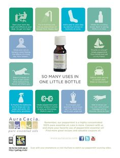 Good to know Pepermint Oil, Go Get Em Tiger, Shower Floor, Natural Solutions, Diffuser, Healthy Living, Essential Oils, Relax, Wellness