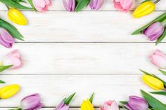 pink and yellow tulips on a white wooden background