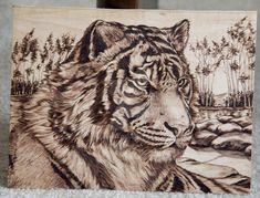 TIGER by AdinBeg on DeviantArt