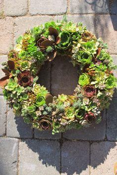 Round Succulent Wreath. LaurasLittleGardens.com