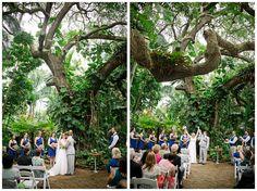 Sunken Gardens Wedding.235 Best Weddings At Sunken Gardens Images In 2019 Sunken