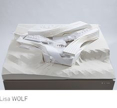 "Lisa WOLF, ""Aerial Station La Paz."" Model."