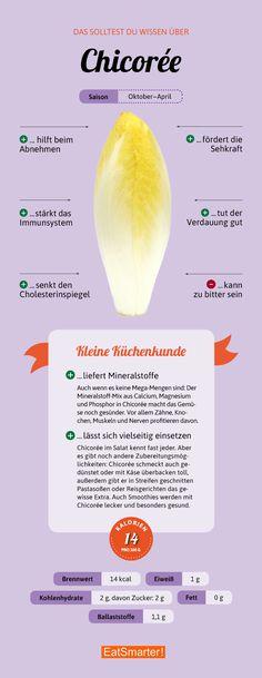 Das solltest du über Chicoree wissen   eatsmarter.de #chicoree #infografik #ernährung