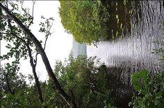 1.1250585625.5_killarney-national-park.jpg 550×365 pixels
