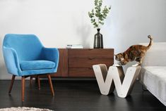 Homycat - La déco pour mon chat et moi ! Entryway Bench, Accent Chairs, Design, Furniture, Home Decor, Cat Grass, Animaux, Entry Bench, Upholstered Chairs