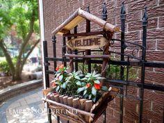 Creativo fai da te idee container giardino - Planter di vite sul cancello di ferro