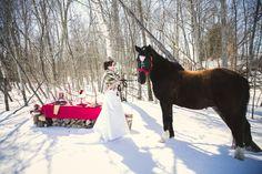 winter wedding Winter Wedding Inspiration, Wedding Shoot, Horses, Photography, Animals, Animales, Animaux, Horse, Photograph