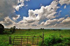 Country Field by JasonMac78