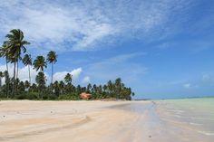 Uma das praias de Maragogi