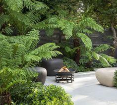 Calm in the City - Garden Design & Landscaping Project Tropical Garden Design, Back Garden Design, Modern Garden Design, Landscape Design, Tropical Gardens, Landscape Plans, Small Backyard Landscaping, Tropical Landscaping, Landscaping Ideas