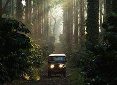 10 magical monsoon drives Bengaluru | Top getaways for wet weekends | Coorg Malnad Nilgiris Wayanad Palolem Malabar Munnar & more | Conde Nast Traveller online (15 July, 2015)
