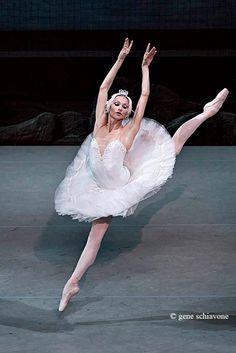 Oksana Skoryk in Swan Lake Photo: Gene Schiavone Kinds Of Dance, Just Dance, Australian Ballet, Dance Tights, Russian Ballet, Ballet Photography, Ballet Beautiful, Swan Lake, Dance Art