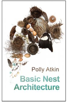 Basic Nest Architecture, Polly Atkin | Debut poetry collection. coming Feb 2017