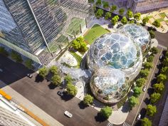 the $4 billion seattle office project dubbed the spheres, boasts tree house meeting rooms, waterfalls and 400 species of plants from around the world.