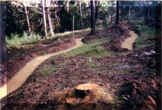Creating a swale for rainwater harvesting.