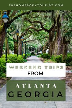 The ULTIMATE list of weekend getaways from Atlanta, GA. Start planning an epic Georgia road trip today. Ideas for adventure-lovers, history-lovers, and art-lovers. Dog-friendly things to do included! Weekend Trips, Weekend Getaways, Atlanta Georgia, Dog Friends, Time Travel, Lovers Art, North America, Things To Do, Waterfall