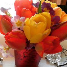 I miei tulipani
