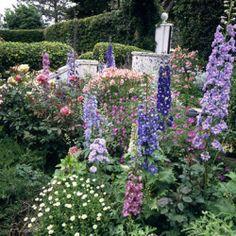 The Garden Estetická