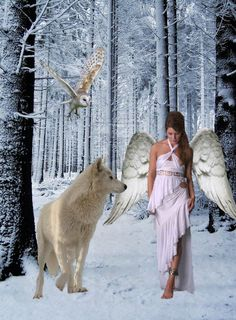 Wolves are a means and a way to fairies.