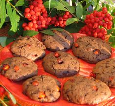 Pihlajanmarjoista makeaa herkkua #cookies