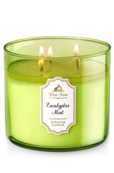 """Eucalyptus Mint - 3-Wick Candle - Bath & Body Works - The Perfect 3-Wick Candle! Made using the highest concentration of fragrance oils, an exclusive blend of vegetable wax and wicks that won't burn out, our candles melt consistently & evenly, radiating enough fragrance to fill an entire room. Candle comes in beautiful colored glass, topped with a flame-extinguishing lid! Burns approximately 25 - 45 hours and measures 4"""" wide x 3 1/2"""" tall."""