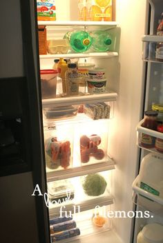 A bowl full of lemons.: Day ~ Getting Organized Challenge (Cleaning out & Organizing the Fridge) Refrigerator Organization, Kitchen Organization, Organization Hacks, Organizing Ideas, Organize Fridge, Kitchen Pantry, Kitchen Hacks, Kitchen Ideas, Creative Storage