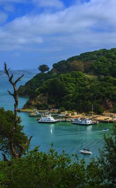 The largest natural island in San Francisco Bay, Angel Island is a landmass full of history and definitely worth the visit.