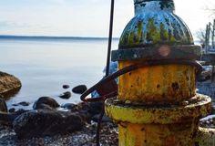 #firehydrant #sebagolake #maine