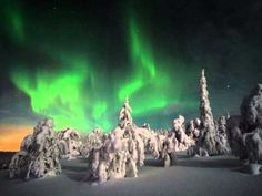 Northern lights tours in Lapland. Experience Aurora Borealis in the arctic wilderness, stay at the ICEHOTEL, drive your own dog sled team. Book your tailor-made holiday and winter travel packages to Lapland. Glass Igloo Northern Lights, Northern Lights Finland, Northern Lights Viewing, Northern Lights Trips, See The Northern Lights, Lofoten, Aurora Borealis, Igloo Village, Village Hotel