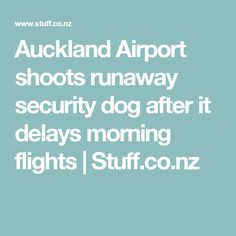 Auckland Airport shoots runaway security dog after it delays morning flights | Stuff.co.nz
