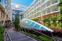 Aft view of the Central Park neighbood and Park Cafe on Royal Caribbean's Allure of the Seas.