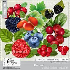 CAJOLINE-SCRAP: Freebie - Vector illustration berries CU
